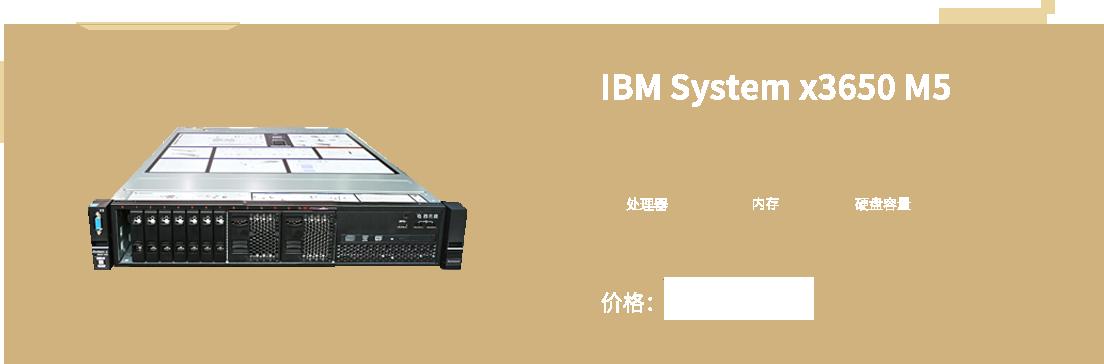 IBM System x3650 M5(5462I25)